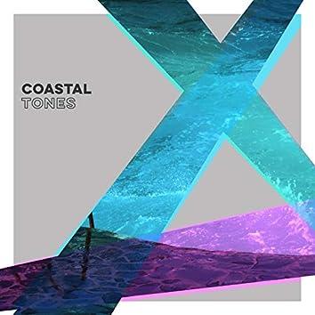 Tranquil Coastal Tones