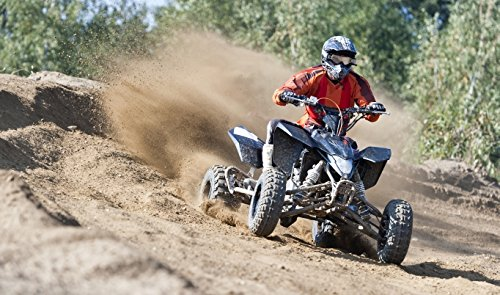 Quad On- und Offroad in Willingen (Upland)