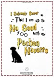 I Solemnly Swear That I am Up to No good with My Pachon Navarro: 120 Page Pachon Navarro Lined Journal - Notebook (7x10)