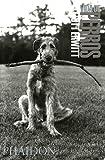 Vida de Perros / Dog Dogs