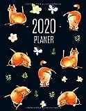 Katze Planer 2020: Tagesplaner 2020 Januar - December (12 Monate) | Lustige Katzen | Ideal für die Schule, Studium und das Büro | Agenda Organizer mit Raum für Notizen