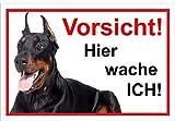 Melis Folienwerkstatt Schild Warnschild Vorsicht freilaufender Hund thumbnail