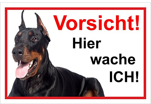 Melis Folienwerkstatt Schild Warnschild Vorsicht freilaufender Hund – Dobermann Achtung – Hier wache ich – 20x30cm – S22E