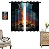 DRAGON VINES Living Room Grommet Insulation Curtain Blackout Curtains for Bedroom Dark Souls 3 Bonfire Artorias and SIF Energy Saving Set of 2 Panels W55 x L39