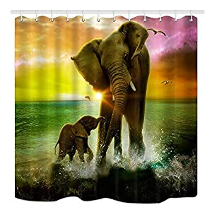 DYNH Animal Theme Shower Curtain, Safari Art, Africa Elephant and Baby Playing in Ocean at Sunrise, Fabric Bathroom Decor Bath Curtains Accessories, with Hooks, 69X70 Inches