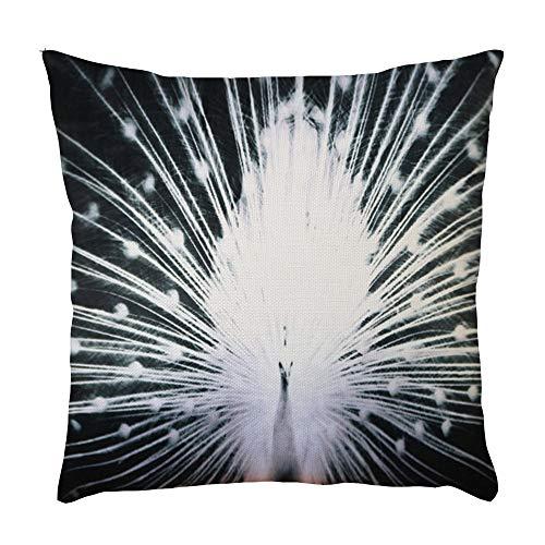 jieGorge Peacock Pattern Pillowcase Pillow Case Cushion Cover Sofa Home Car Decor, Pillow Case, for New Year (A)