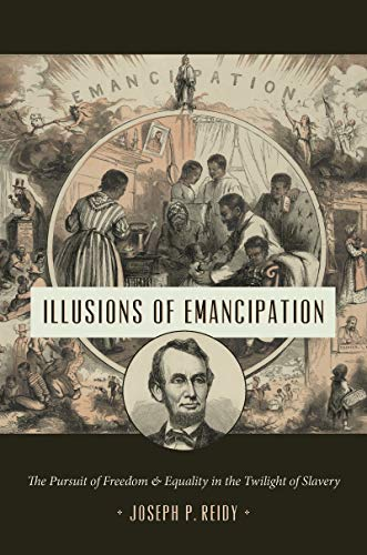Cover of Illusions of Emancipation