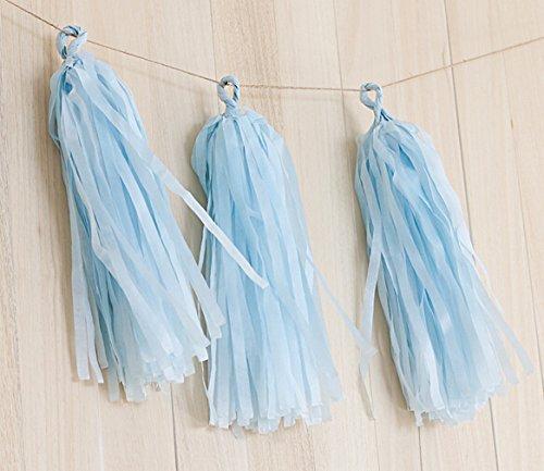 Tissue Paper Tassel Garland Bunting Party Wedding Birthday Party DIY Pom Poms Decor (turquoise)