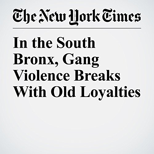 In the South Bronx, Gang Violence Breaks With Old Loyalties copertina