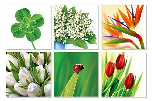 Schöne Blumen Nr. 02 - Hochwertige Postkarten ohne Text im Inneren