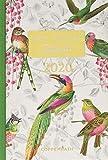 Mein 3 Minuten Tagebuch 2020 (Bunte Vögel) (Jahreskalender)