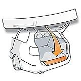 Lackschutzshop – Pellicola protettiva per la vernice del paraurti autoadesiva (pellicola di protezione per auto) trasparente 150 µm – 100% su misura per tipo di veicolo/auto vedi descrizione