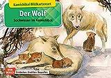 Der Wolf. Kamishibai Bildkartenset. Entdecken - Erzählen – Begreifen: Sachwissen. (Sachwissen für das Kamishibai) - Katharina Stöckl-Bauer
