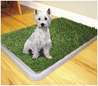 Trade Shop traesiodog Toilette Perros Potty Patch Arenero Inodoro Lavable 3 Capas excrementos Animales 43 x 68 cm