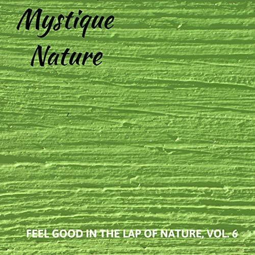 Calm Singing Birds Zone, White Noise Meditation & Nature Sounds