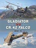 Gladiator vs CR.42 Falco: 1940–41 (Duel)