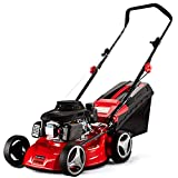 Gas Lawn Mowers Review and Comparison