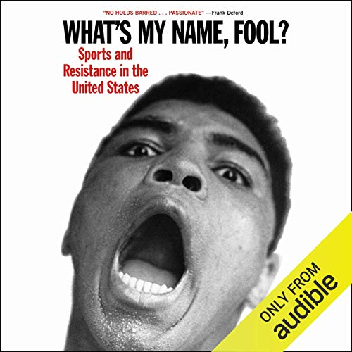 What's My Name, Fool? audiobook cover art