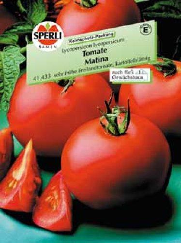 Tomate Matina, sehr frühe Freilandtomate