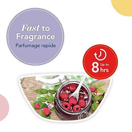 Yankee Candle cialde di cera profumate Wax Melt   Lampone rosso   Durata della fragranza: fino a 8 ore   1 pezzo