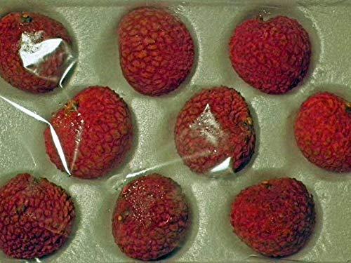 楊貴妃も大好物の宮崎県完熟生ライチ2Lサイズ9個化粧箱入り。