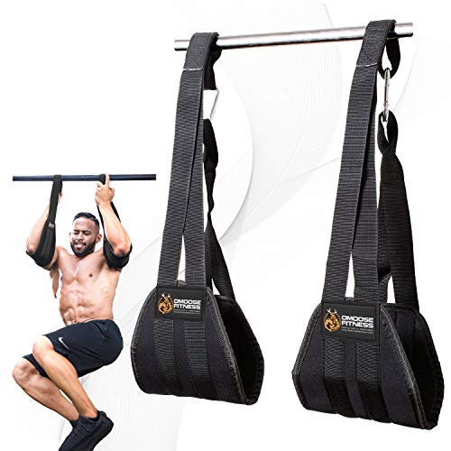DMoose Fitness Hanging Ab Straps for Abdominal Muscle Building and Core Strength Training, Arm Support for Ab Workouts, Padded Gym Equipment for Men and Women
