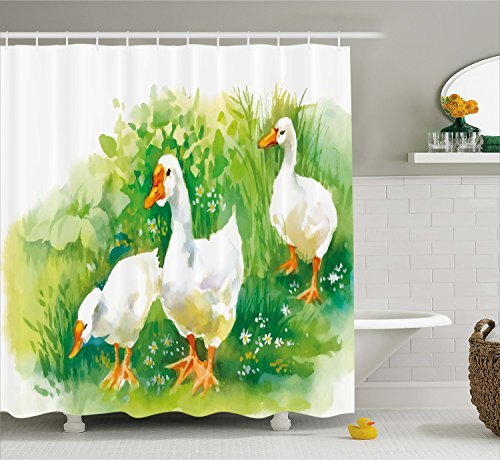 Duck Shower Curtain Set by Ambesonne, Goose in Farm Lake Plants Grass Reeds Flowers Pond Animals Geese Feathers Life Paint Style, Fabric Bathroom Decor with Hooks, 70 Inches, Green White
