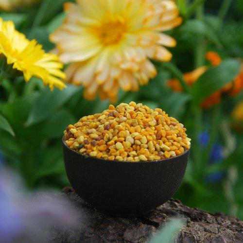 Hochaktive spanische Blütenpollen 1kg