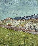 AMANUO Van Gogh Impresiones Pinturas Famosas sobre Lienzo Paisaje 50X60 cm Cuadros Enrollada - Vista De Los Alpilles