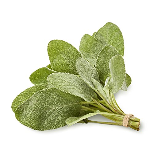 Organic Sage, .75 oz Clamshell