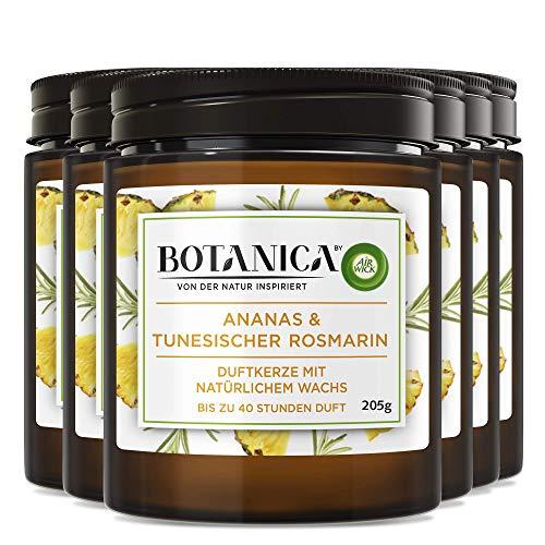 Botanica by Air Wick Duftkerze – Duft: Ananas & Tunesischer Rosmarin – Nachhaltig hergestellt mit natürlichen Inhaltsstoffen – 6 x Kerze im Glas