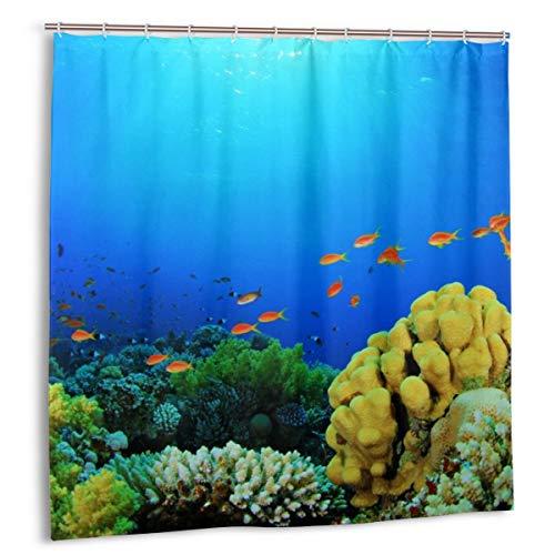 N/A douchegordijn met haken badkamer gordijnen waterdichte meeldauw resistent schimmel antibacteriële bad, 12 haken 183 X 183CM(zee vis diepten Aquarium natuur kleuren planten koraal algen zon)