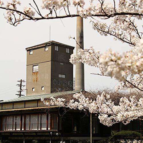中野BC富士白無限麦[焼酎25度和歌山県1800ml]