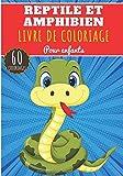 Reptile Et Amphibien Livre de Coloriage: Pour Enfants Filles & Garçons | Livre Préscolaire 60 Pages et Dessins Uniques à Colorier sur Les lézards, ... et Plus | Idéal Activité à la Maison.
