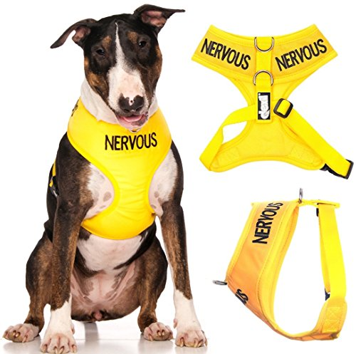 Dexil Limited Nervous (Give Me Space) Yellow Color Coded Non-Pull Front and Back D Ring Padded and Waterproof Vest Dog Harness Prevents Accidents by Warning Others of Your Dog in Advance (L)