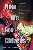 Now We Are Citizens: Indigenous Politics in Postmulticultural Bolivia by Nancy Grey Postero(2006-10-26)
