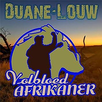Volbloed Afrikaner