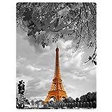 YISUMEI Decke 150x200 cm Kuscheldecken Sanft Flanell Weich Fleecedecke Bettüberwurf Eiffelturm Paris Design