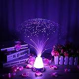 Ledmomo - Lampe à fibre optique LED avec batterie et base en verre changeant de couleur (Type 1)