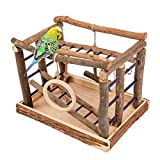 Niteangel Natural Living Playground for Birds, Bird Activity Center