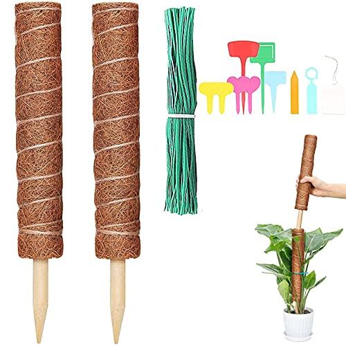 HighydroLED 2 piezas de 24 pulgadas de coco musgo poste tótem con 10 etiquetas de plantas y 100 lazos de torcedura de plantas, soporte para plantas de interior para crecer hacia...