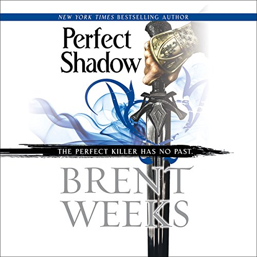 Perfect Shadow audiobook cover art