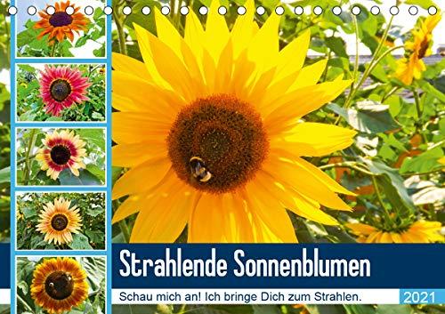 Strahlende Sonnenblumen (Tischkalender 2021 DIN A5 quer)