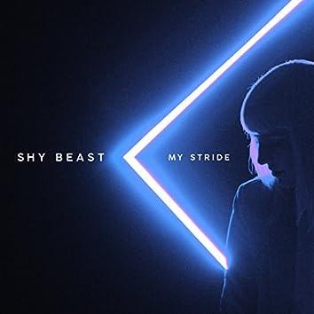 My Stride
