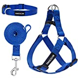 DMISOCHR Dog Harness and Leash Set with Collar - Step-in Adjustable No Pull Safe Doggy Harness - Soft Nylon H-Shape Full Body Harness - Easy Walking Control for Small, Medium, Large Dogs