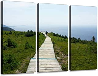 Walking along the skyline trail on Cape Breton Island, Nova Scotia, Wall Artwork Exclusive Photography Vintage Abstract Paintings Print on Canvas Home Decor Wall Art 3 Panels Framed Ready to Hang