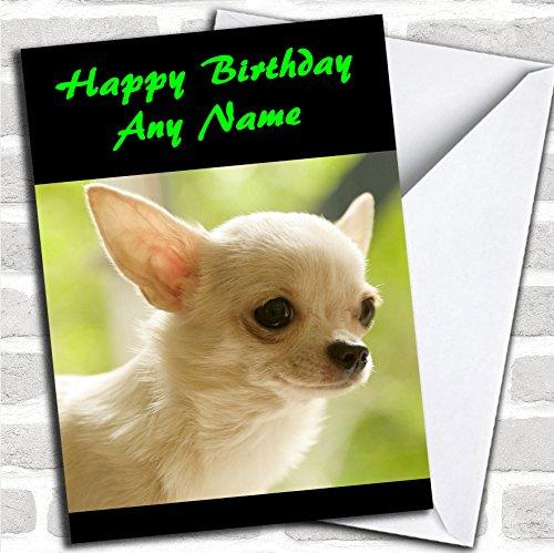 Chihuahua Hond Verjaardagskaart Met Envelop, Kan Volledig Gepersonaliseerd, Verzonden Snel & Gratis