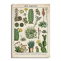 キャンバス絵画サボテン多肉植物現代植物花スカンジナビアの壁アート写真リビングルーム用のプリントとポスター(40x60cm)1pcsフレームなし