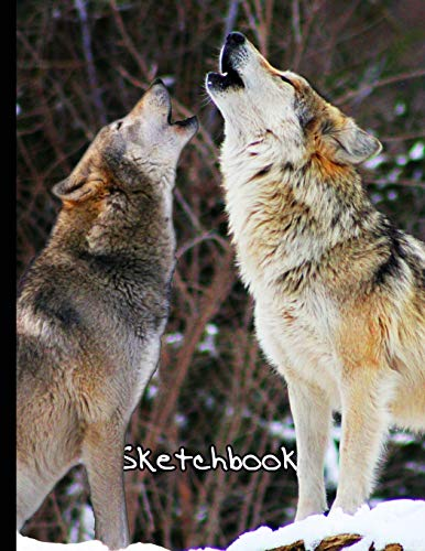 wolf drawing book - 6