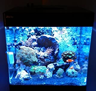 Best solar flare led aquarium light Reviews